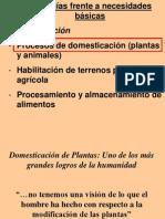 Domesticacion de Plantas