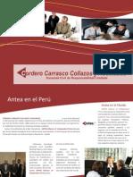 Brochure Cordero Carrasco Collazos