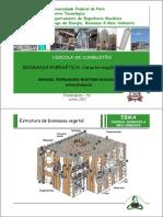 Manoel F M Nogueira-Caracterizacao Biomassa