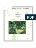 nanotechnology project portfolio