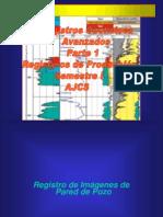 Clase 10-Registros Geofísicos