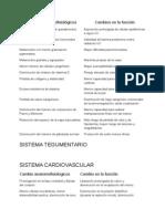 Cambios Anatomofisiologicos