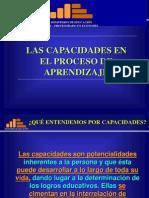 Capacidades INES
