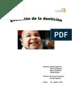 Ev de La Denticion Informe