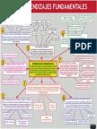 8 Aprendizajes Fundamentales
