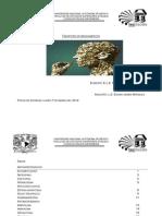 indice farmaco.pdf
