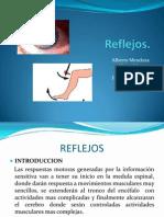 Reflejos fisiologia