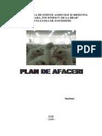 96277060-Plan-de-Afaceri-Ferma-Pui.pdf