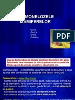Prezentare Curs Salmoneloze General +Mamifere