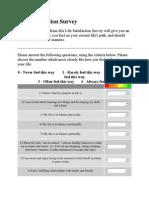 Life Satisfaction Survey