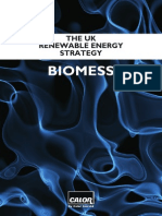 Bio Mess - the UK renewable energy strategy