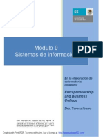 Estrategias Para La Implatacion de Sistemas de Informacion - 2