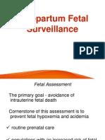 Antenatal Fetal Monitoring