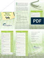 Programacion Virtual Abril - Junio 2014- BIG