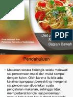 Diet Pada Penyakit Saluran Cerna Bagian Bawah