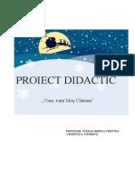 Proiect Didactic Mirela