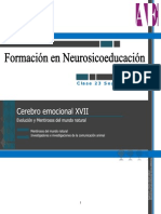 Cerebro Emocional - Mentiras Evolutivas