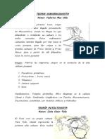 TEORIA INMIGRACIONISTA.docx