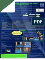 3. Abordaje Fisioterapico Del Sindrome Del Tunel Tarsiano Caso Clinico