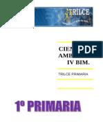 CIENC Y AMBT  IV BIM