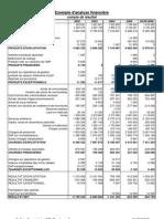 Analyse Financiere - CNFPT 2-2-07