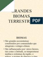 GRANDES BIOMAS TERRESTRES (1ª PARTE)