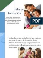Una familia en formación (1)