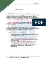 O%20Mercantilismo%20dt.pdf