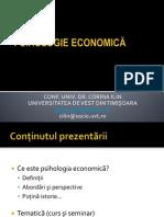 Ppt Curs 1 Psih Economica ILIN CORINA Introducere 2013