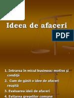 Tema 2_Ideea de Afaceri