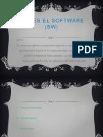 Software (Sw)