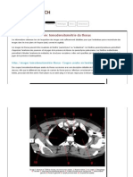 Atlas anatomie_ tomodensitométrie du thorax (fenêre médiastinale)