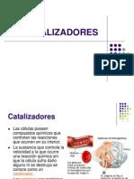 Enzimas y Biotecnologia II