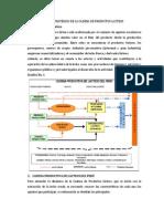 DIAGNOSTICO ESTRATÉGICO DE LA CADENA DE PRODUCTOS LACTEOS