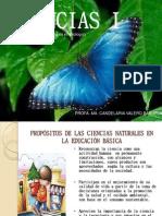 Ciencias i Enfoque Didc3a1ctico (2)
