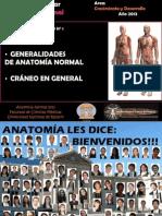 SEMINARIO Nº 1 GENERALIDADES Y CRANEO