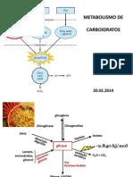 02-20-2014 Carboidratos glicólise fermentação