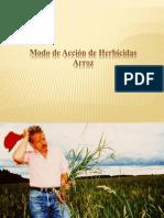 LA GENETICA DE HERBICIDAS ARROZ 2011.ppt