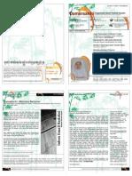 DamarSantri Edisi 11 - OSWAH - 25 Oktober 2009
