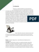 Artesanía Urbana2.doc