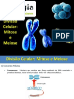 aulamitoseemeiose-130904104440-