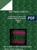 esfingolipidos-090705133618-phpapp02