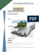 INFORME DE BIOQUIMICA-IDENTIFICACIÓN DE PROTEINAS-2013-1