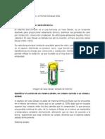 Aporte_Fase_1_Cesar_Rengifo_grupo20.doc