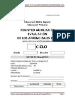 Registro Auxiliar de Evaluacion 2014