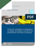 Fichas Imagenes de Enfermedades