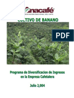 Cultivo de Banano Guatemala