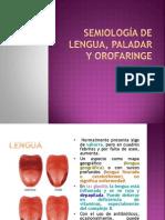 SEMIOLOGÍA DE LENGUA, PALADAR Y OROFARINGE
