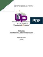Cap2_Identificación y  selección de proyectos