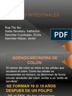 Cancer Intestinal Patologia Upsjb-2013 Seminario